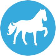 sport_cavallo